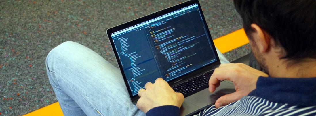 Entwicklung von Software